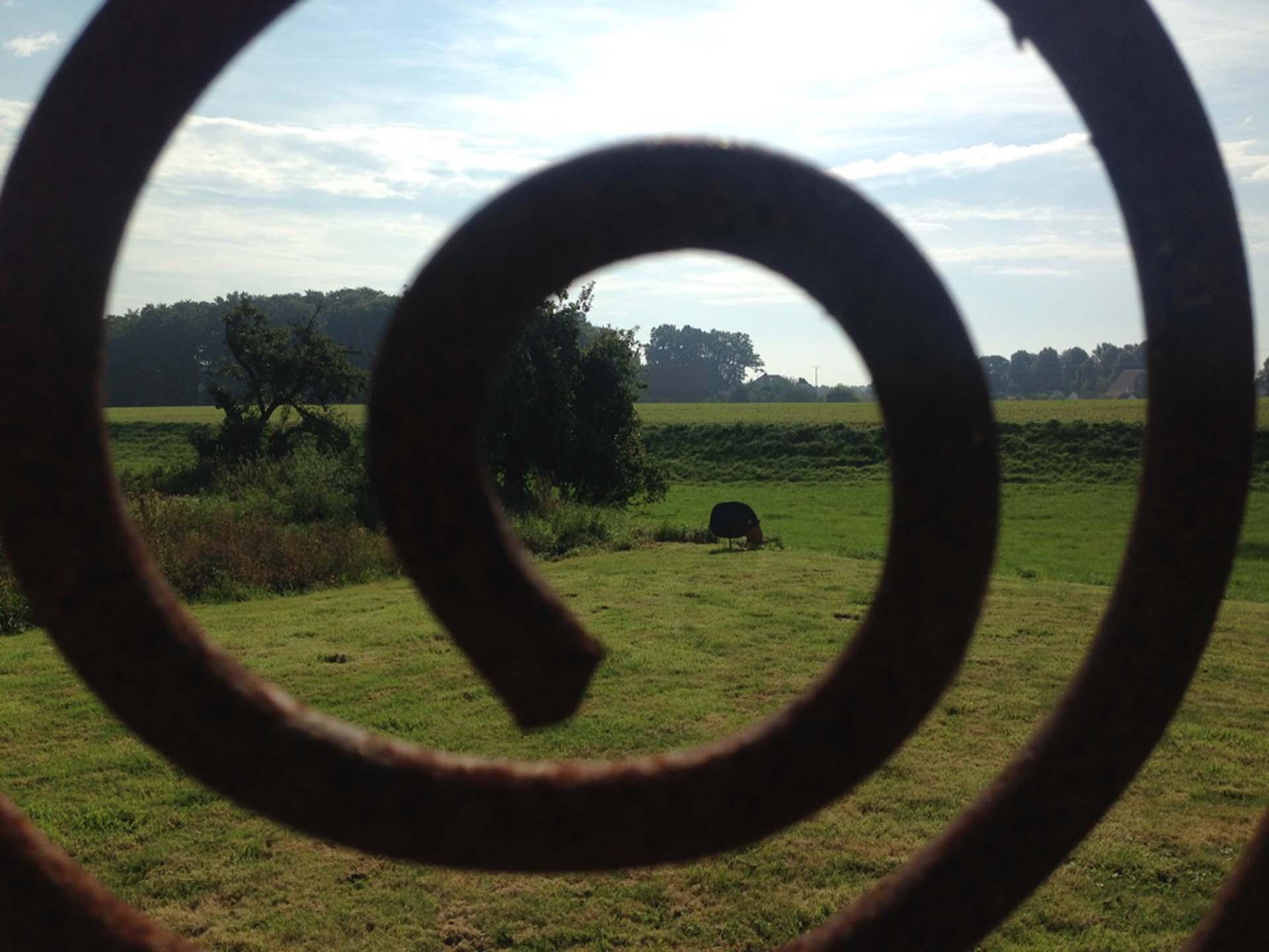 HofKunst in Häger - 2015 - Blick auf Schaf